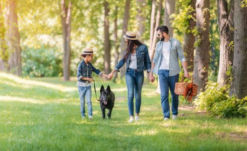 family with dog walking through shaded woods in fall with picnic basket
